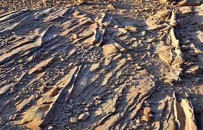 Photograph - Desert Abstracts 11 by John Hintz