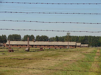Auschwitz Photograph - Never Forget 3 by Mirek Bialy