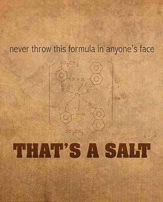 Teacher Mixed Media - Never Throw This Formula In Anyones Face Thats A Salt Humor Poster by Design Turnpike