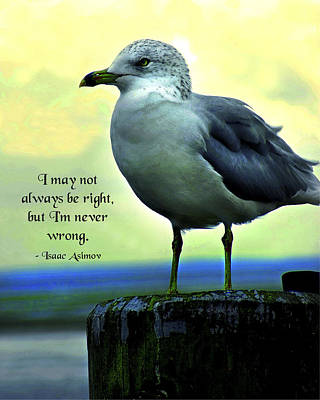 Never Wrong Art Print by Mike Flynn