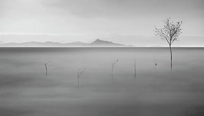 Monochrome Photograph - Neverland by Asef Azimaie
