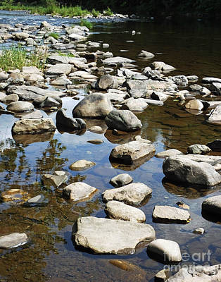 Photograph - Neversink River Stones New York by Lizi Beard-Ward