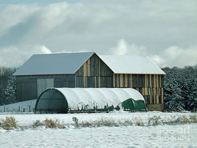 Art Print featuring the photograph New And Old Barn Planks by Brenda Brown