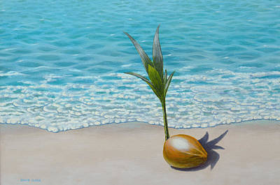 Painting - New Beginnings Germinating Cocont Palm by David Clode