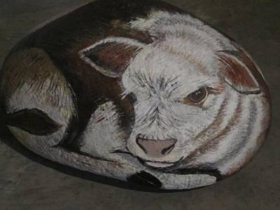 Painting - New Born Calf by Sharon Duguay