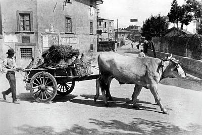 Wine Cart Photograph - New Chianti Wine by Underwood Archives