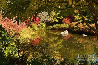Digital Art - New England Fall Colors by Eva Kaufman