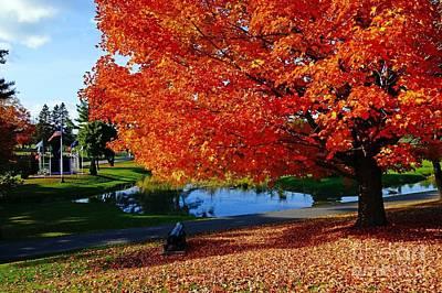 New England Fall  Art Print by Melissa C