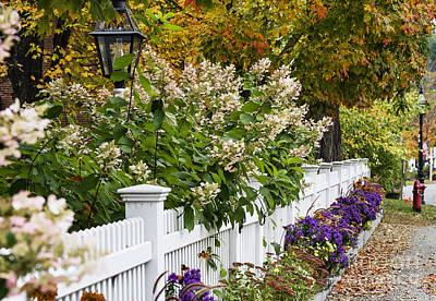 New England Picket Fence  Art Print by John Greim