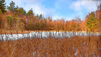 Photograph - New England Pond by Dan Sabin