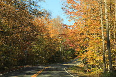 Photograph - New England Road by Max  Greene