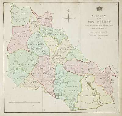 Cartography Photograph - New Forest Region In Southampton by British Library