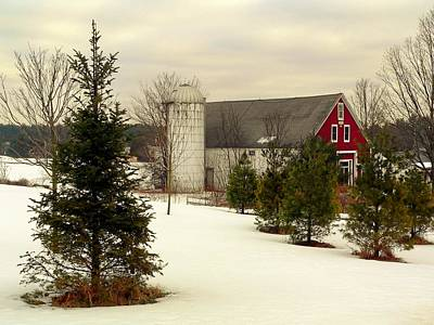 New Hampshire Barn Art Print by Janice Drew