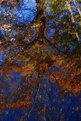 Photograph - New Hampshire Farm Pond Reflections 2 by Robert Lozen