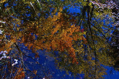 Photograph - New Hampshire Farm Pond Reflections 3 by Robert Lozen