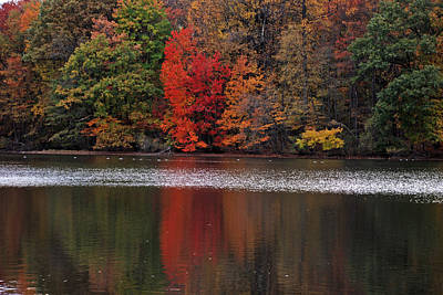 Photograph - New Jersey Autumn Reflections by Richard Bryce and Family