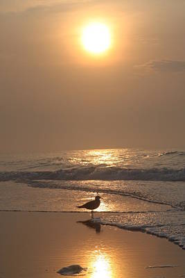 Photograph - New Jersey Sunrise by Vadim Levin