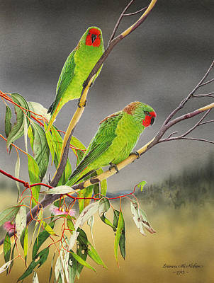 Painting - New Life - Little Lorikeets by Frances McMahon