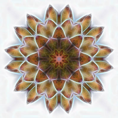 Digital Art - New Life Mandala by Beth Sawickie