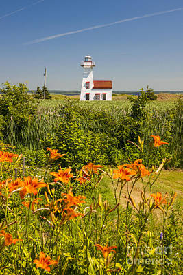 Lilies Royalty-Free and Rights-Managed Images - New London Range Rear Lighthouse by Elena Elisseeva