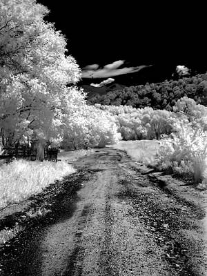 Photograph - New Mexico Back Road by Joshua House
