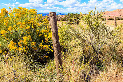 Photograph - New Mexico Fence by Ben Graham