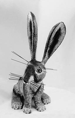 Photograph - New Mexico Rabbit B W by Rob Hans