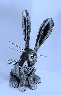 Photograph - New Mexico Rabbit Cyan by Rob Hans