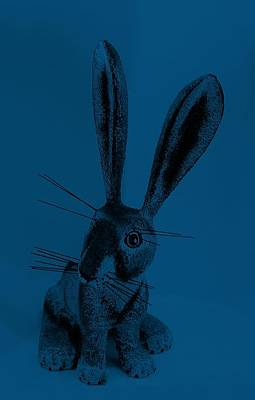 Photograph - New Mexico Rabbit Denim Blue by Rob Hans