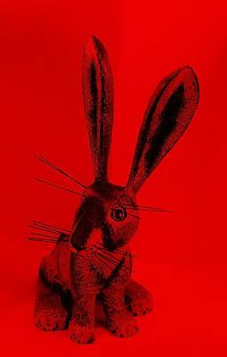 Photograph - New Mexico Rabbit Red by Rob Hans