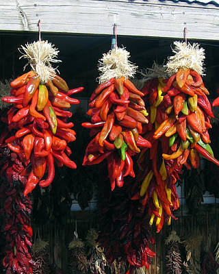 Photograph - New Mexico Red Chili Peppers by Kurt Van Wagner