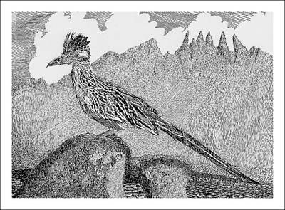 New Mexico Drawing - New Mexico Roadrunner by Jack Pumphrey