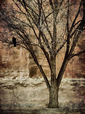 Corvid Photograph - New Mexico Winter by Carol Leigh