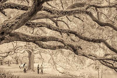 Photograph - New Orleans Audubon Park by Scott Rackers