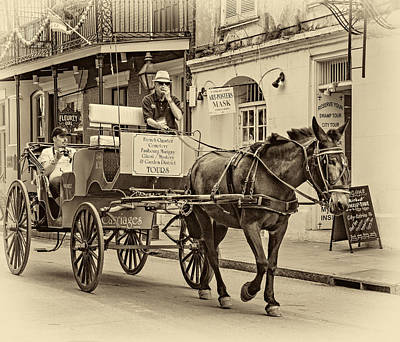 Carriage Photograph - New Orleans - Carriage Ride Sepia by Steve Harrington