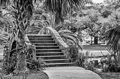 Live Oaks Photograph - New Orleans - City Park Bridge 2 Bw by Steve Harrington