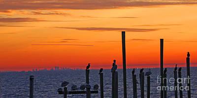 City Sunset Digital Art - New Orleans City Skyline With Pelicans by Luana K Perez