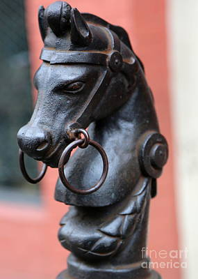 Photograph - New Orleans Horse Tether by Carol Groenen
