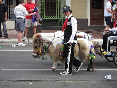 Parade Photograph - New Orleans - Mardi Gras Parades - 1212135 by DC Photographer