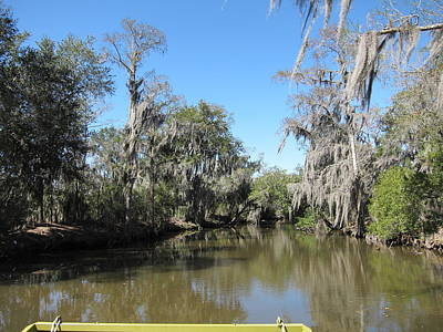 New Orleans - Swamp Boat Ride - 1212137 Art Print by DC Photographer
