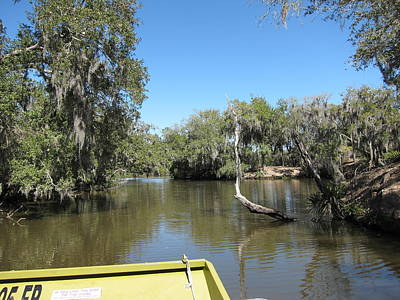 New Orleans - Swamp Boat Ride - 1212149 Print by DC Photographer
