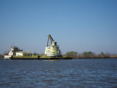 Swamp Photograph - New Orleans - Swamp Boat Ride - 121230 by DC Photographer