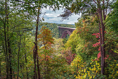 Photograph - New River A Touch Of Fall by Mary Almond