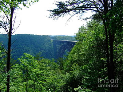 Art Print featuring the photograph New River Gorge by Deborah DeLaBarre