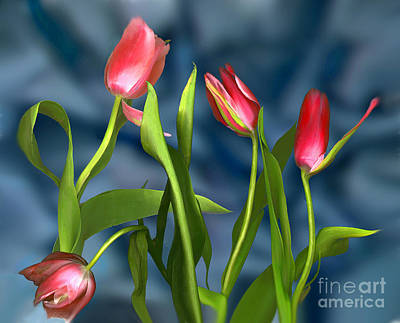 Digital Art - New Tulips by Ursula Freer