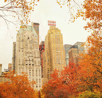 Fall Foliage Photograph - New York City - Autumn - Central Park Foliage by Vivienne Gucwa