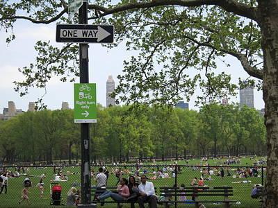 New York City - Central Park - 121223 Art Print by DC Photographer