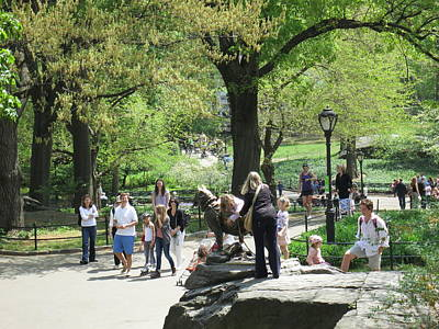 Central Photograph - New York City - Central Park - 12127 by DC Photographer