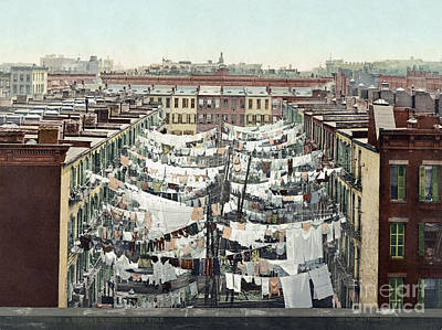 Photograph - New York City- Clothesline. by Granger