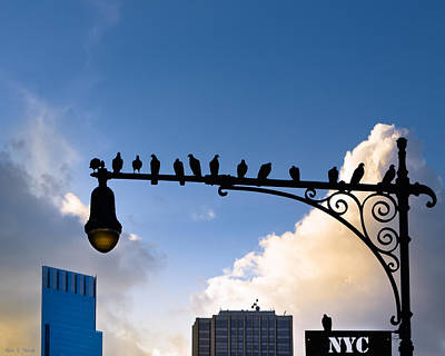 New York City Is For The Birds Art Print by Mark E Tisdale